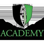 Academy Sports Turf