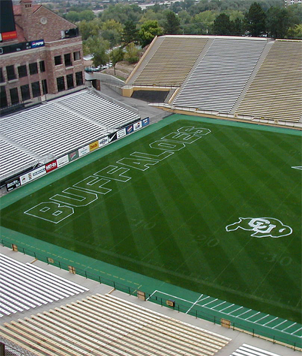 Denver Sports Turf